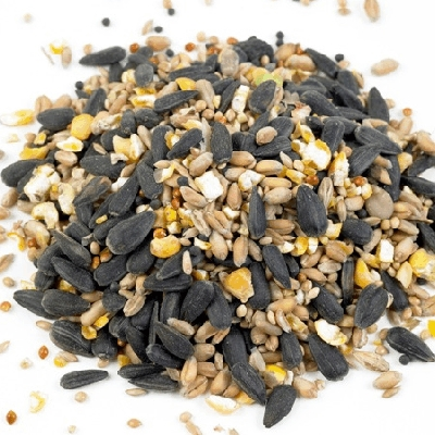 Mixed Seed (6kg Bag)