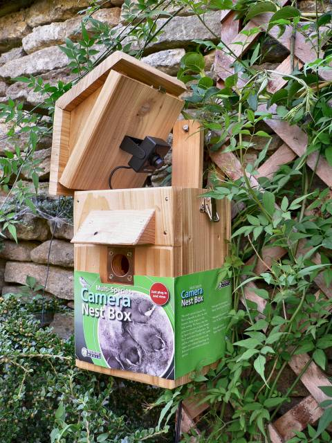 COLOUR CAMERA MULTISPECIES NEST BOX