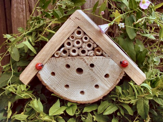 Insect Habitats Roceco Ecological Products Buy Online Uk