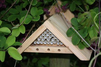 MASON/ORCHARD BEE BOX