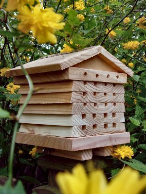 SOLITARY BEE HIVE WITH INTERACTIVE S/S BOLTS