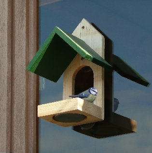 WINDOW FEEDER BLUE
