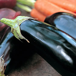 Aubergine moneymaker