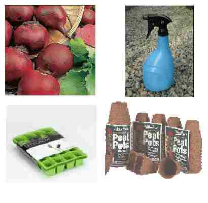 Vegetable seed propagation pack
